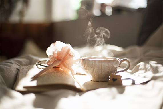 Eliminar malos olores en casa, baño, cocina, mascotas…