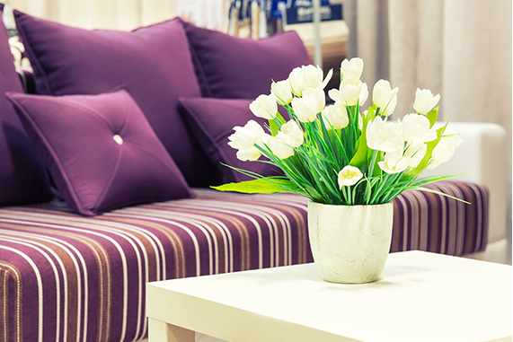 Cuidados para sofá y alfombra: trucos y consejos
