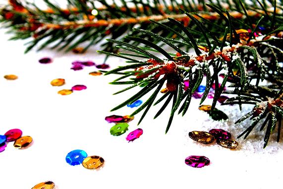 como escoger árbol de navidad, natural o sintético
