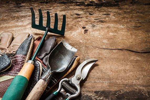herramientas para cuidar el jardin 571×381