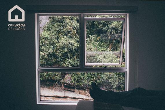 ¿Por qué montar una mosquitera en tu hogar? Consejos