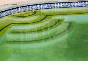 Que pasa si no aplico el mantenimiento de la piscina