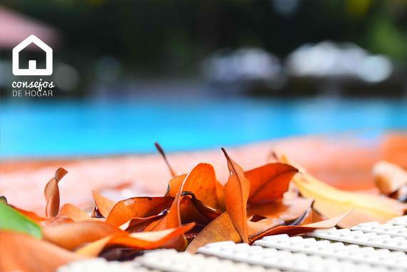 El mantenimiento de la piscina en oto o consejos de for Mantenimiento de la piscina